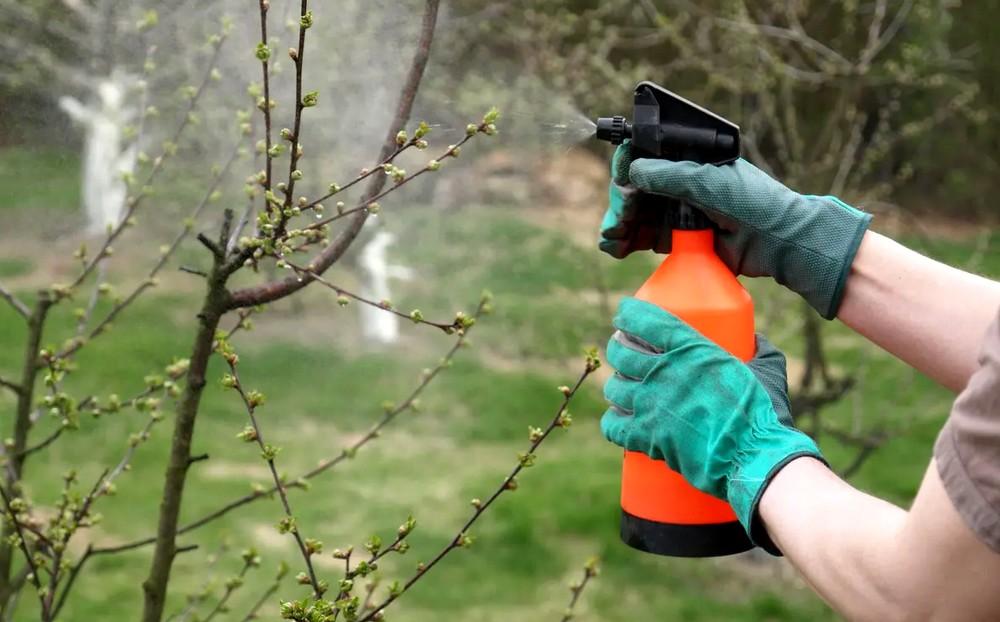Les effets des pesticides sur l'environnement
