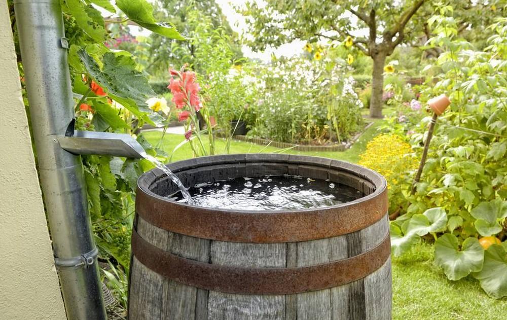 Vivre de manière plus écologique en recyclant et en utilisant l'eau de pluie