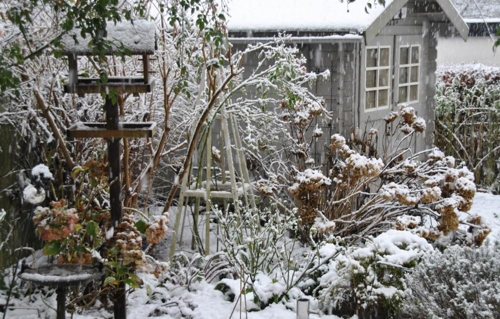 Protégez votre terre en hiver